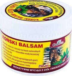 Gorvita Koński Balsam 250ml