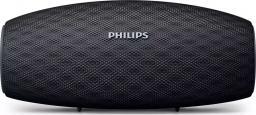 Głośnik Philips EverPlay BT6900B/00