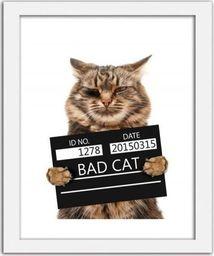 Feeby Obraz w ramie białej, Bad cat 21x29,7