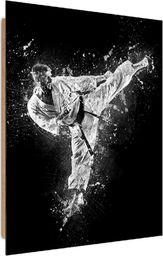 Feeby Deco Panel, Karateka  50x70