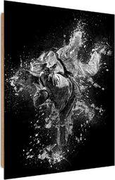 Feeby Deco Panel, Walka Judo 1 50x70