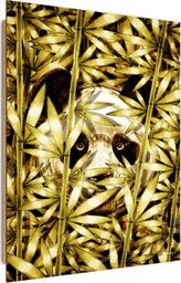Feeby Deco Panel, Ukryta Panda  50x70
