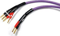 Kabel Melodika Banan x2 - Banan x4 3m fioletowy