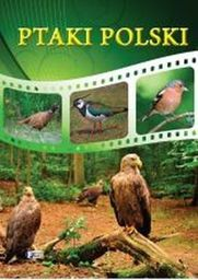 Ptaki Polski TW FENIX