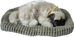 Askato Śpiący pies na poduszce Mops