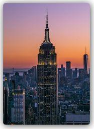 Plakat metalowy Feeby Wydruk na metalu, Empire State Buildin 20x30