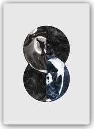 Plakat metalowy Feeby Wydruk na metalu, abstrakcyjne koła 20x30