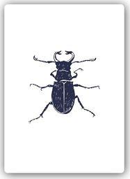 Plakat metalowy Feeby czarny chrabąszcz 20cmx30cm