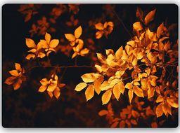 Plakat metalowy Feeby jesienny krzew 30cmx20cm