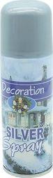 TG Farba dekoracyjna w sprayu - srebrna  uniwersalny