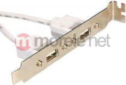 Unitek Śledź 2 x USB 2.0 (B2-USBAF-5P-0.3M08A)
