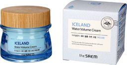 SAEM Krem do twarzy Iceland Water Volume Cream nawilżający 80ml