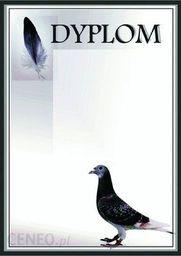 Tryumf Dyplom Papierowy - Gołąb (25 Szt.)