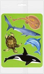 Panta Plast Szablony do obrysowania Zwierzęta morskie