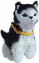 Askato Interaktywny kotek czarno-biały