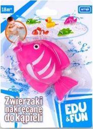 Artyk Zabawka do wody - Różowa Rybka Edu&Fun