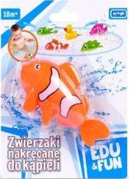 Artyk Zabawka do wody - Pomarańczowa Rybka Edu&Fun