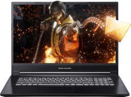 Laptop Dream Machines G1050 (G1050-17PL58)