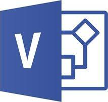 Program Microsoft Visio Pro 2019 PL Medialess (D87-07441)