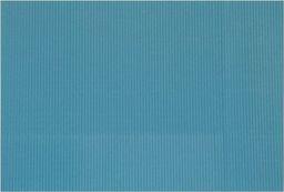 Aliga Karton falisty 50x70cm niebieski (TF-R-42)