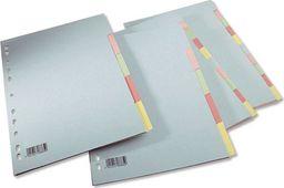 Herlitz Przekładki Spoko A4 karton 2x5 kolorów (2x5 kol.)