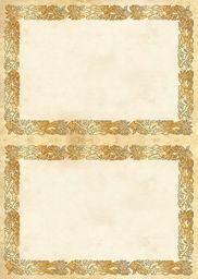Argo Dyplom Galeria Papieru celtic A4 170G