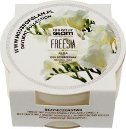 House of Glam HOG Freesia CFF (MINI)