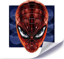 Feeby Plakat, Człowiek pająk 40x40