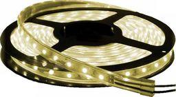 Taśma LED Import Taśma LED biała ciepła 5m 300 SMD