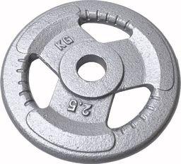 Sportia Obciążenie żeliwne kierownica 2.5 kg