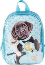 Paso PASO Plecak Przedszkolny PEF-303 Studio Pets Pies i Kot uniwersalny