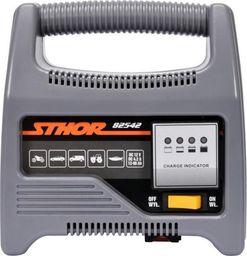 STHOR STHOR PROSTOWNIK 12V 6A 90Ah LED T82542