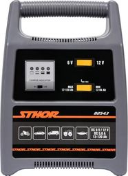 STHOR STHOR PROSTOWNIK 6/12V 8A 120Ah LED T82543
