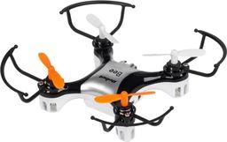 Dron Rebel Bee (ZAB0100)