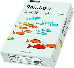 Papyrus Papier ksero Rainbow A4 80g szary 500 arkuszy