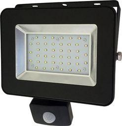 Naświetlacz Bemko BEMKO Naświetlacz wodoodporny IP65 LED 30W 230V z CZUJNIK RUCHU barwa zimna