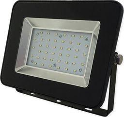 Naświetlacz Bemko BEMKO Naświetlacz wodoodporny IP65 LED SMD 30W 230V barwa zimna