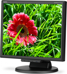 Monitor NEC MultiSync E171M black