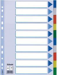 Esselte Przekładki do segregatora A4 plastikowe 20 kart (10K217C)