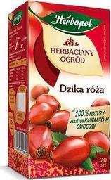 HERBAPOL HERBAPOL Herbata owocowa dzika róża, opakowanie 20 sztuk