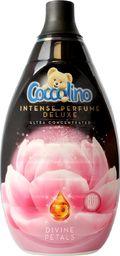 Płyn do płukania Coccolino  COCCOLINO_Perfume Deluxe koncentrat do płukania tkanin Divine Petals 870ml