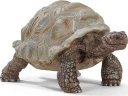 Figurka Schleich Żółw gigant