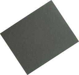 Dedra Arkusz papier wodoodporny 230x280mm, gr60