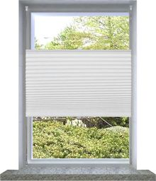 vidaXL Plisowana roleta, biała (40x100cm).