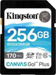 Karta Kingston SDXC Canvas Go! Plus 256GB (SDG3/256GB)