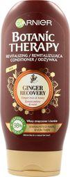 Garnier Botanic Therapy Korzeń Imbiru & Miód Odżywka do włosów cienkich i zmęczonych  200ml