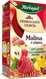 HERBAPOL Herbata herbapol herbaciany ogród malina z pigwą 20/p