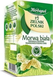 HERBAPOL Herbata morwa biała 20  torebek