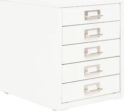 vidaXL Szafka na dokumenty z 5 szufladami, metal, 28x35x35 cm, biała