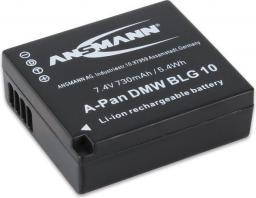 Akumulator Ansmann A-Pan DMW-BLG 10 (apanblg10)